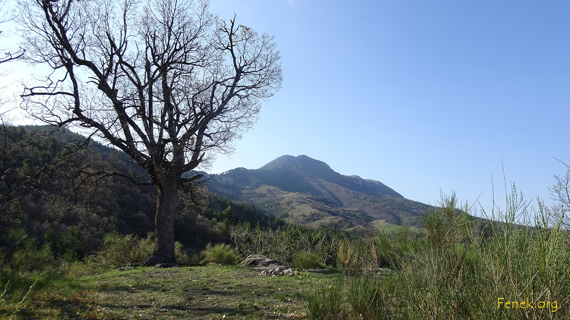 der zweigipflige Berg vor mir.....