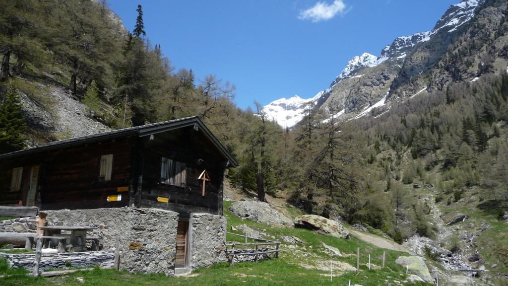Alp Joli