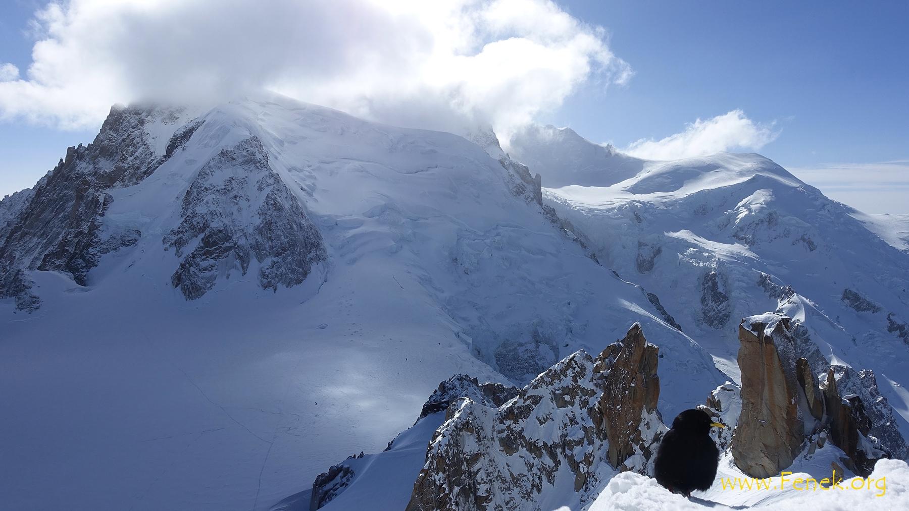 der ersehnte Augenblick auf die Flanke des Mont Blanc du Tacul