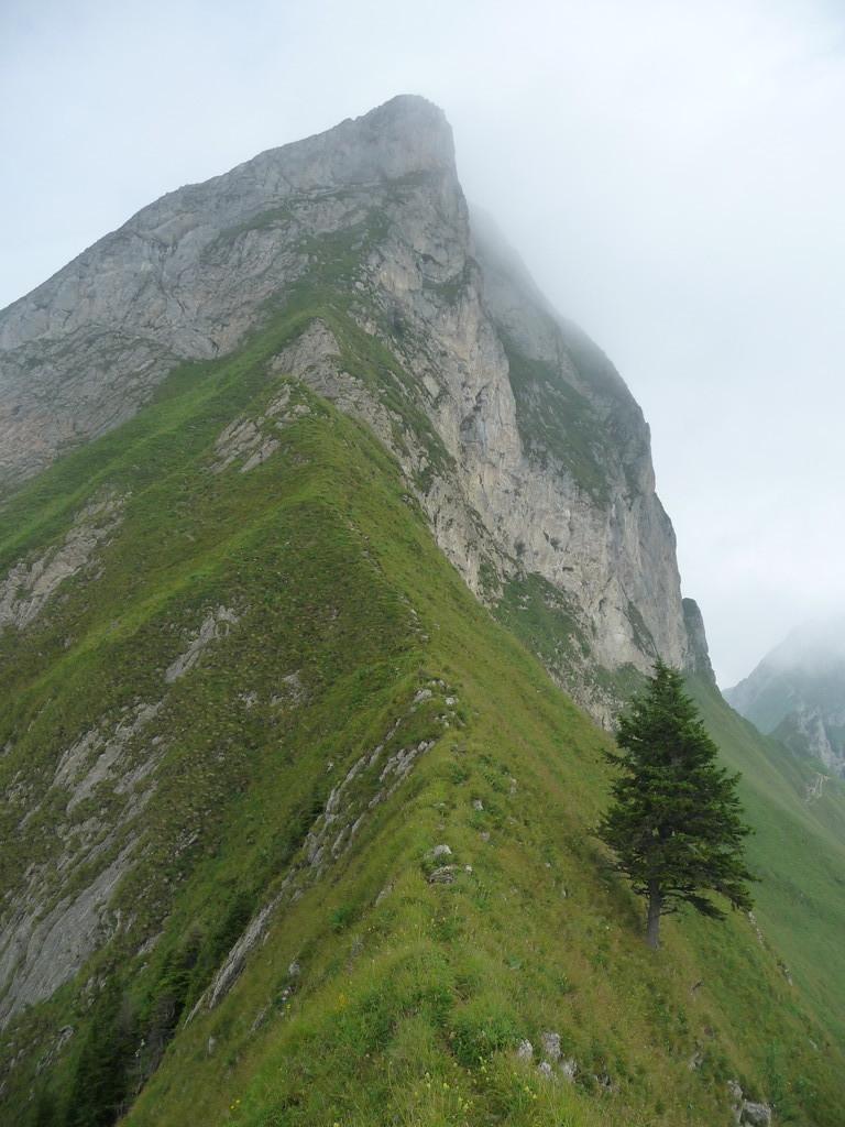 Abstiegseite der Nünenen