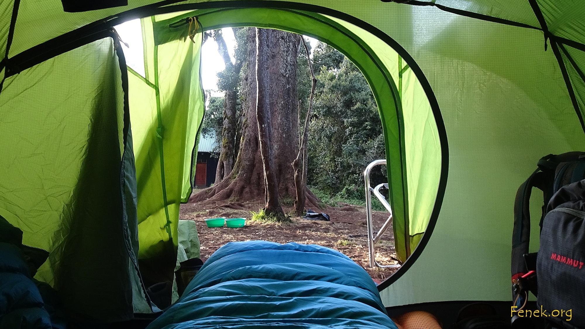 erstes Camp - Blick aus dem Schlafzimmer.....