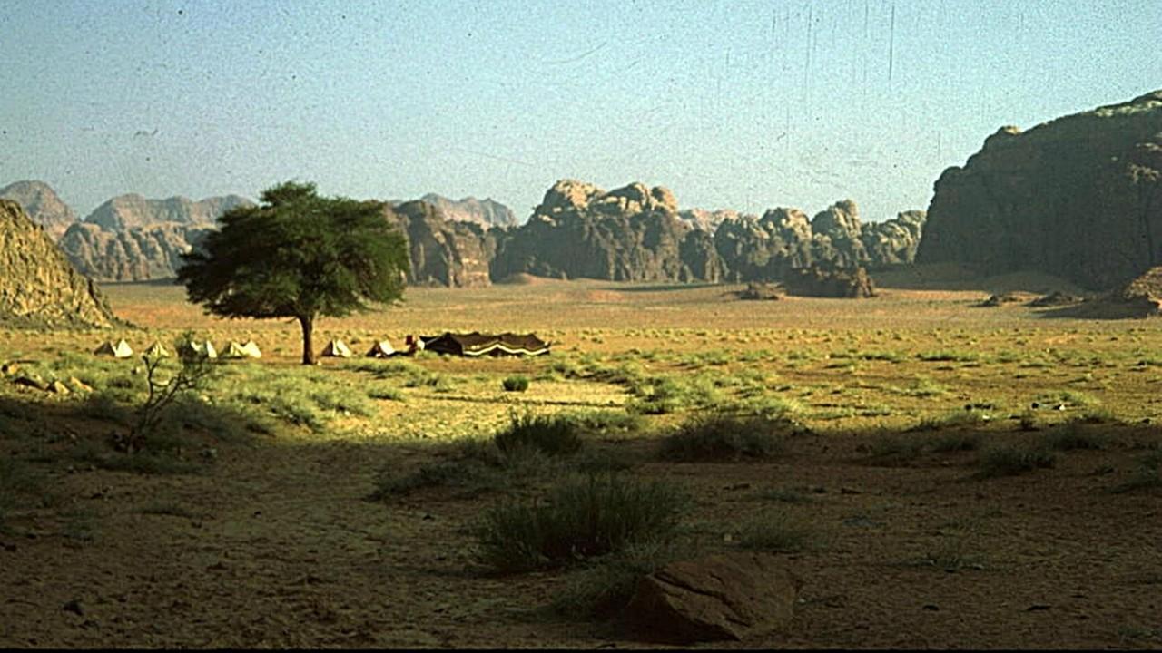 unser Lager im Wadi Ram