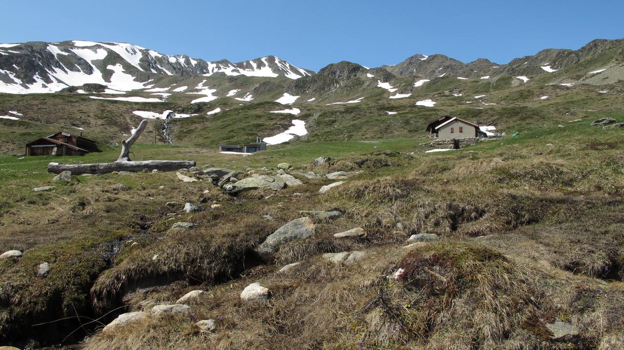 Alp Stafel und Niwen