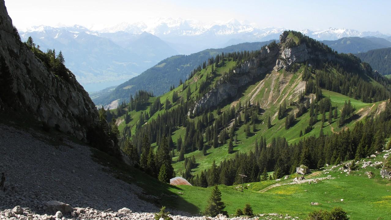 unten Alp Tumli