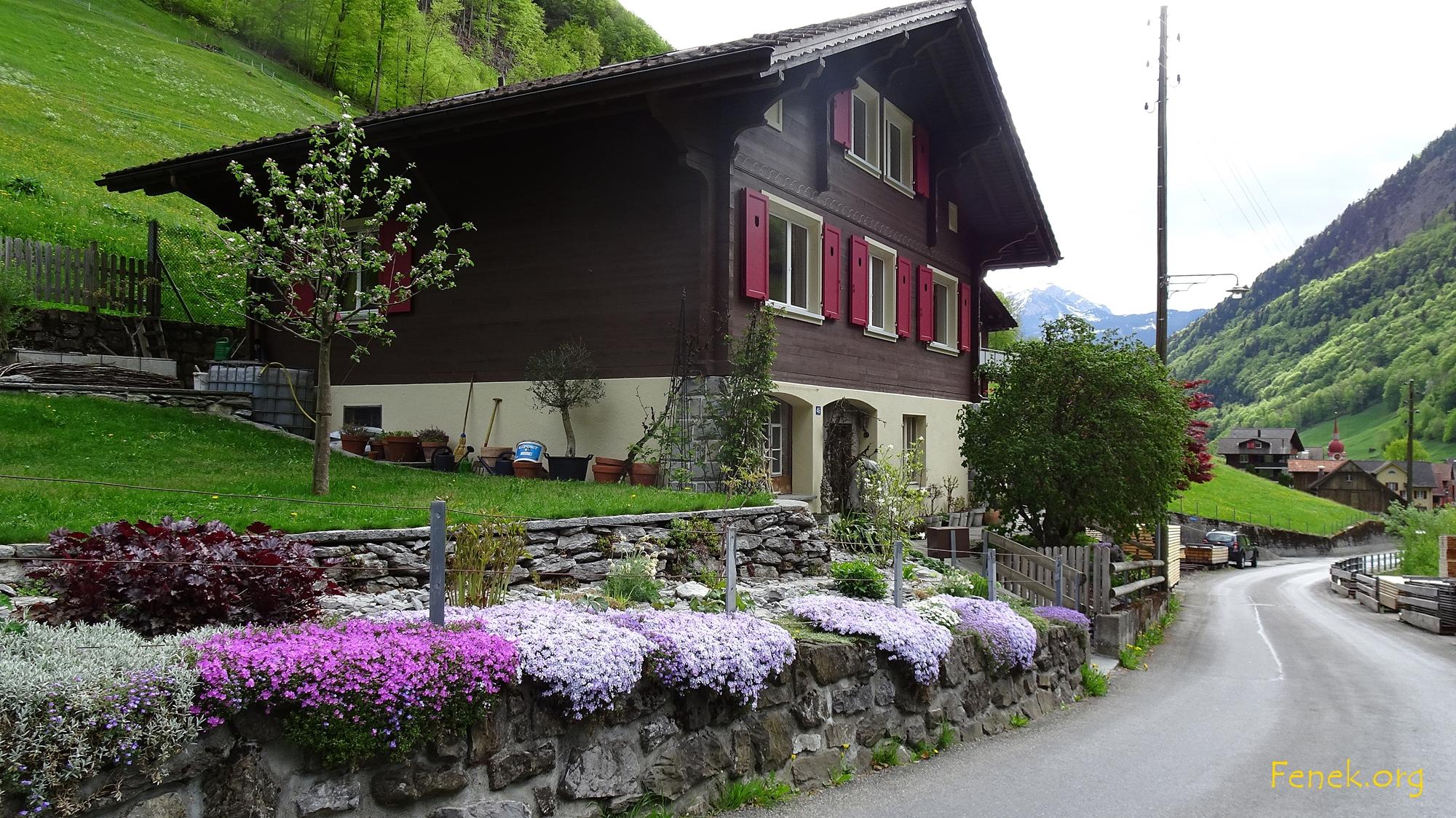 Frühlingspracht in Isenthal
