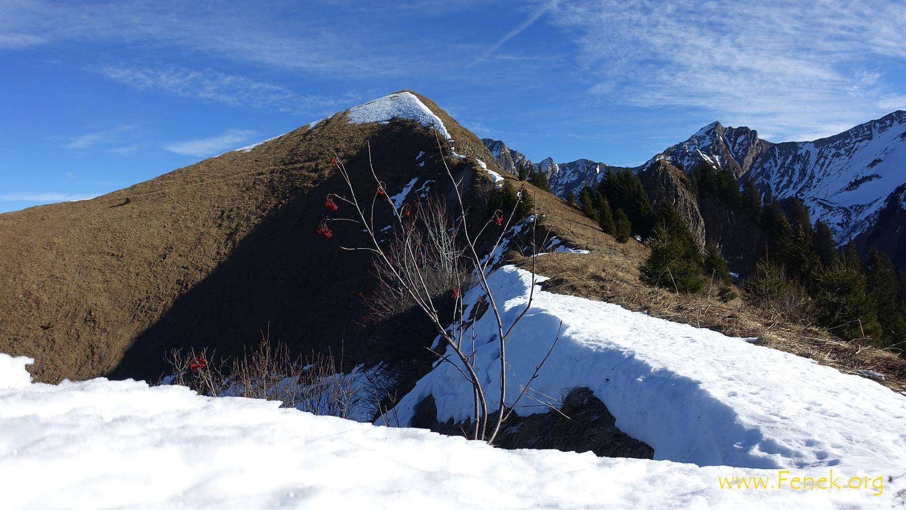 der eigentliche Gipfel ist noch 10min höher...