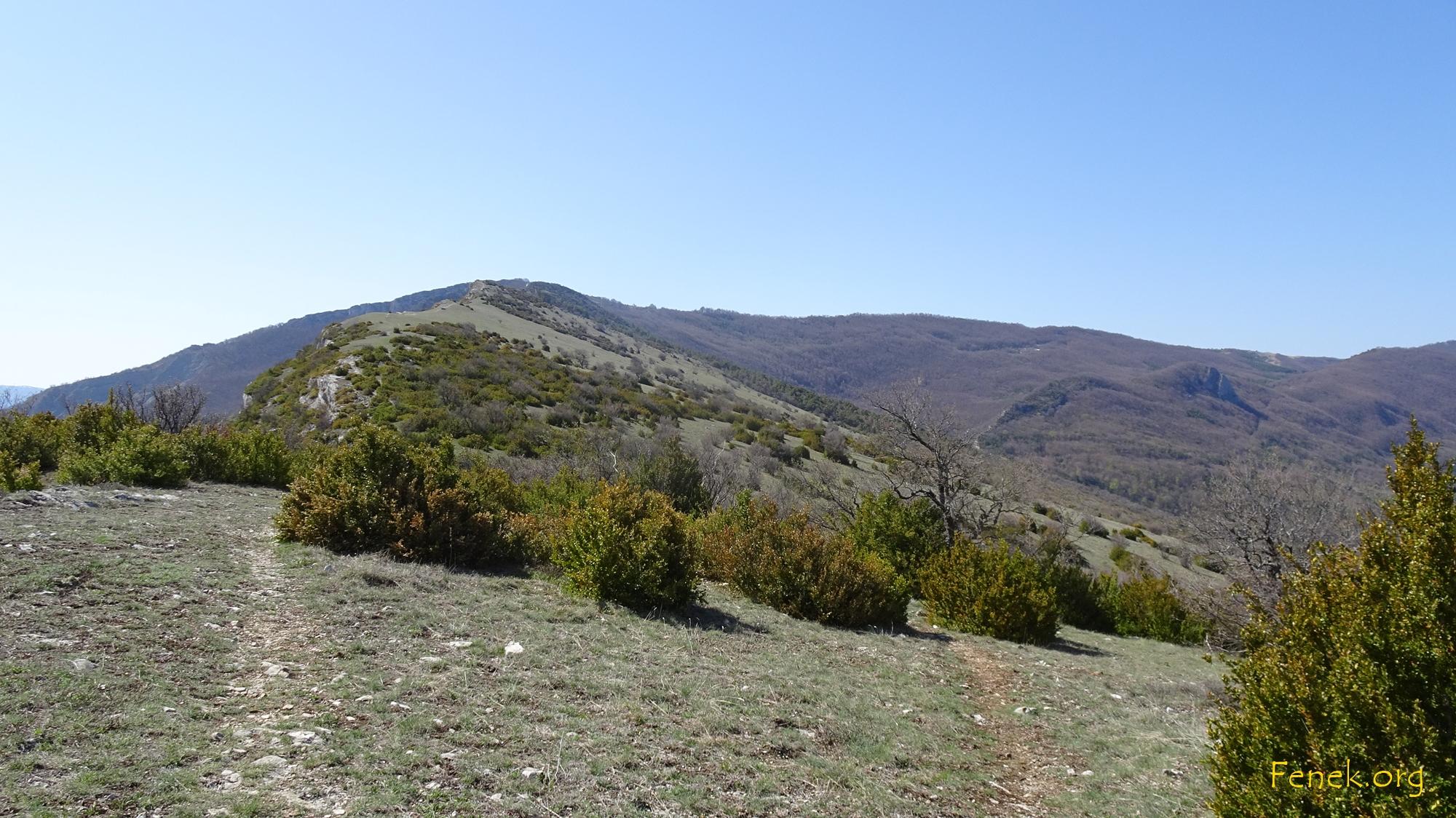 auf dem Hochplateau dem Gipfel entgegen