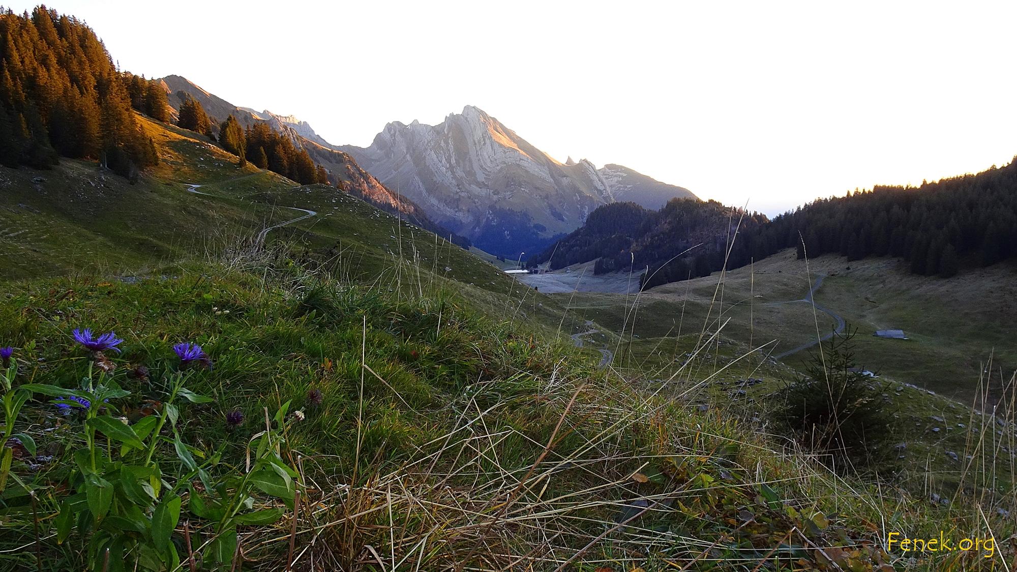 Sonnenaufgang am Wildhuser Schafberg