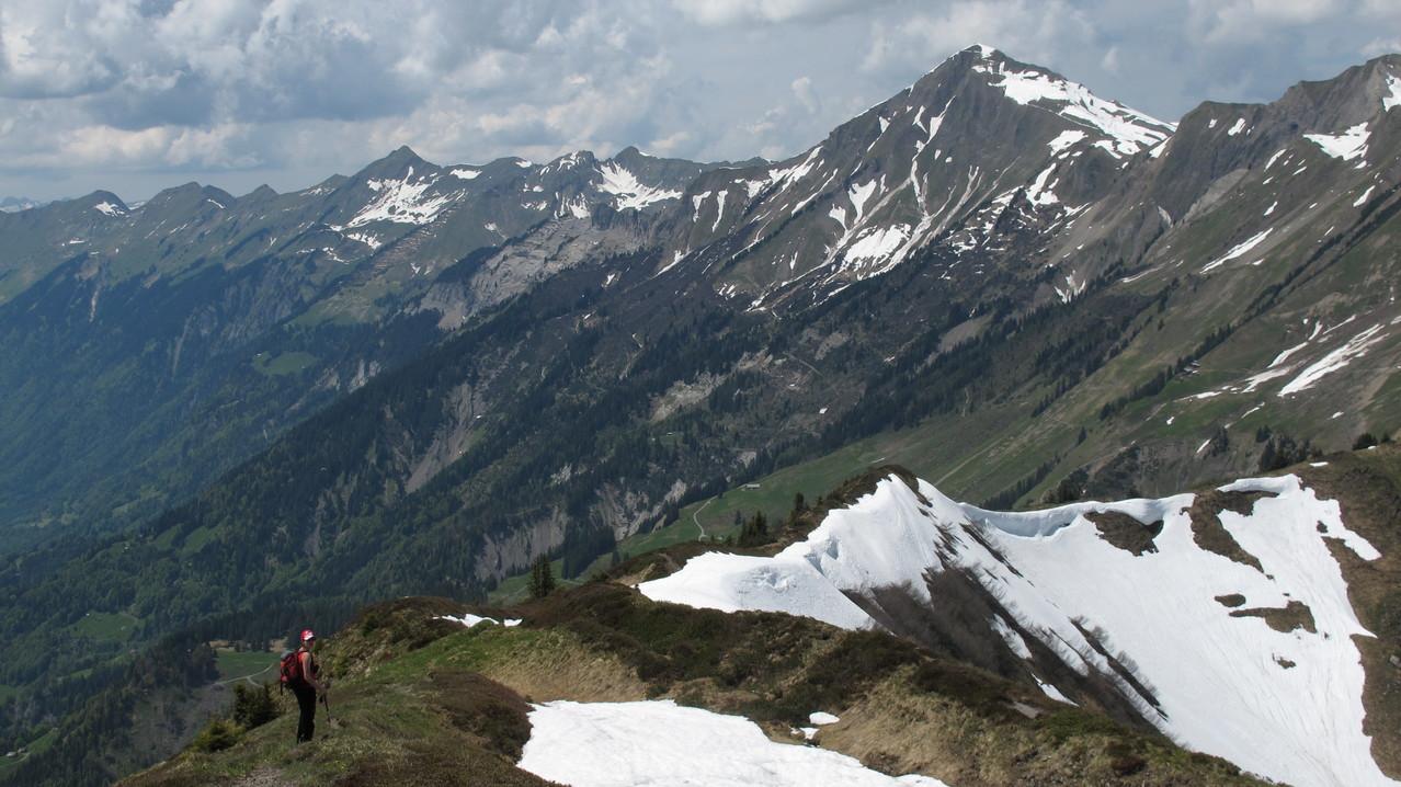 im Hintergrund Brienzer Rothorn