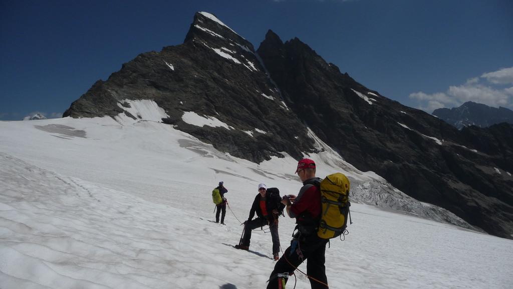 wir sind zurück auf dem Gletscher - hinten das Breithorn