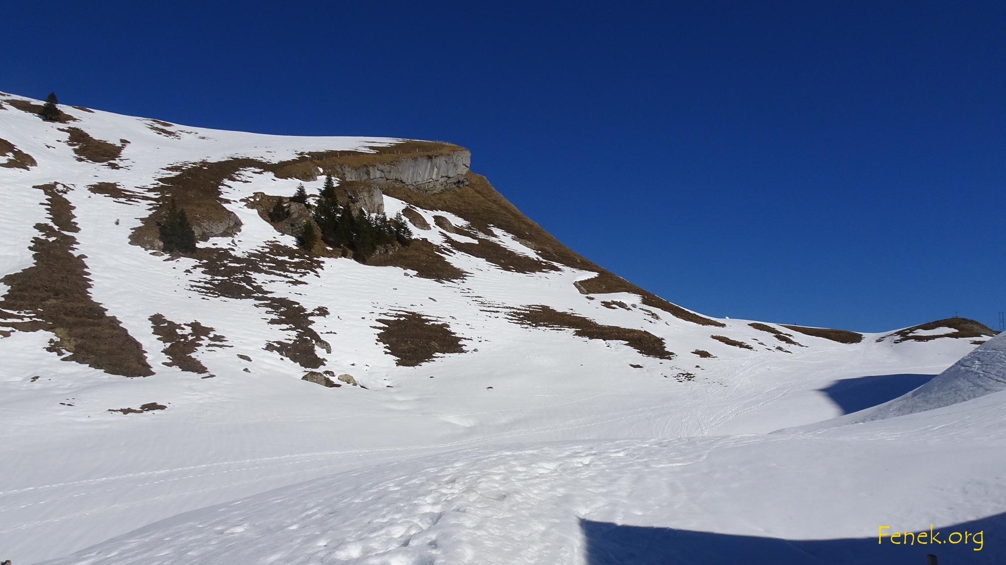 Fidisberg - ein schweisstreibender Aufstieg in Schnee und Gras