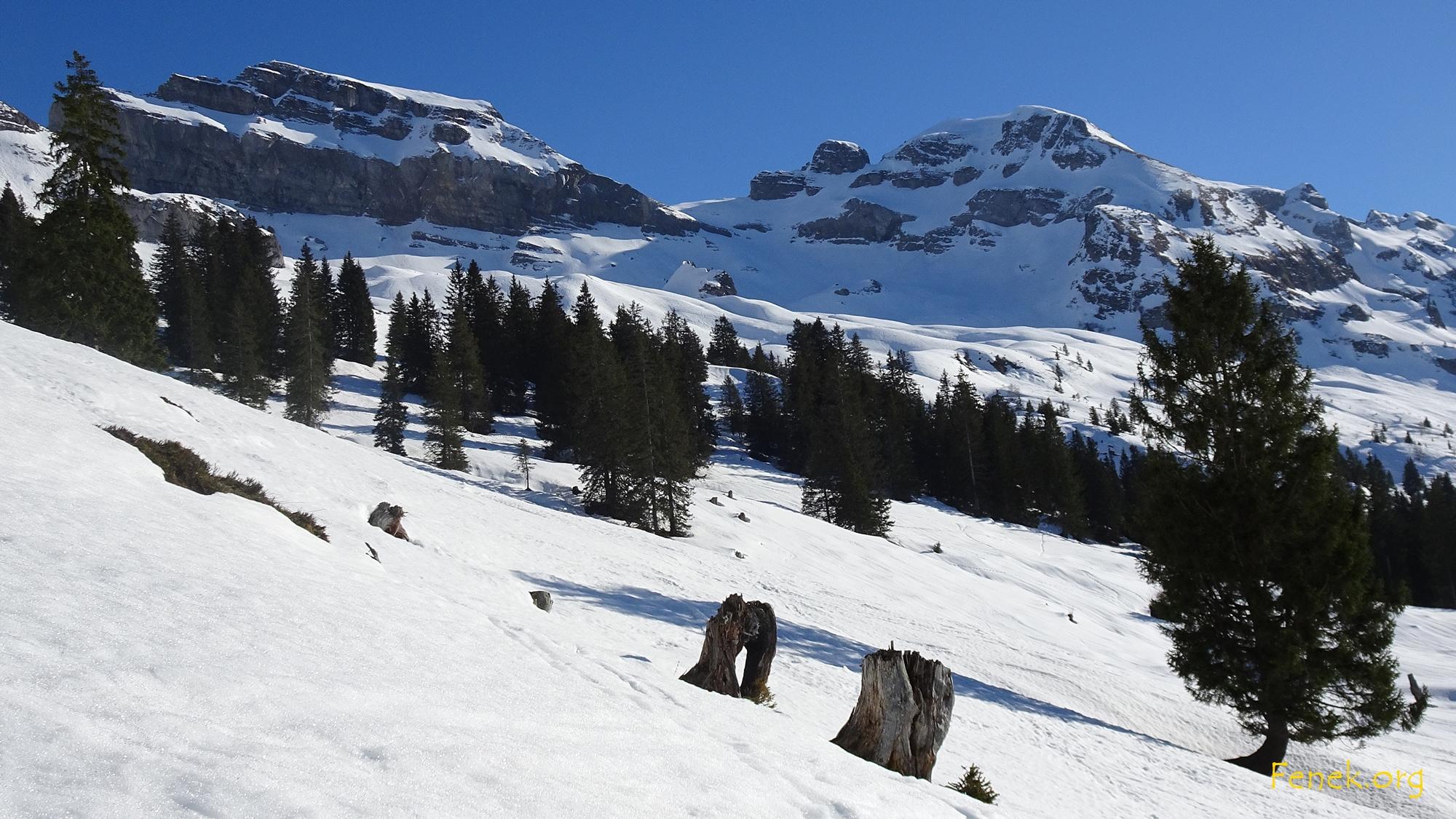 letzter Blick in die Bergwelt - Forstberg und Druesberg