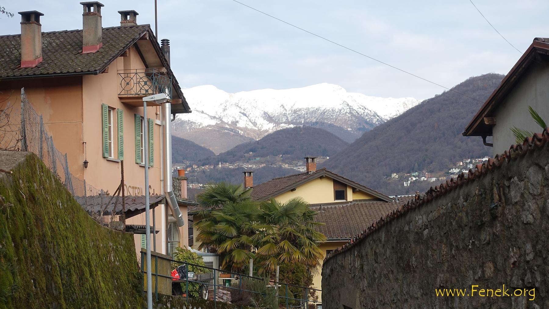 Kontrast im Tessin - Palmen und Schnee