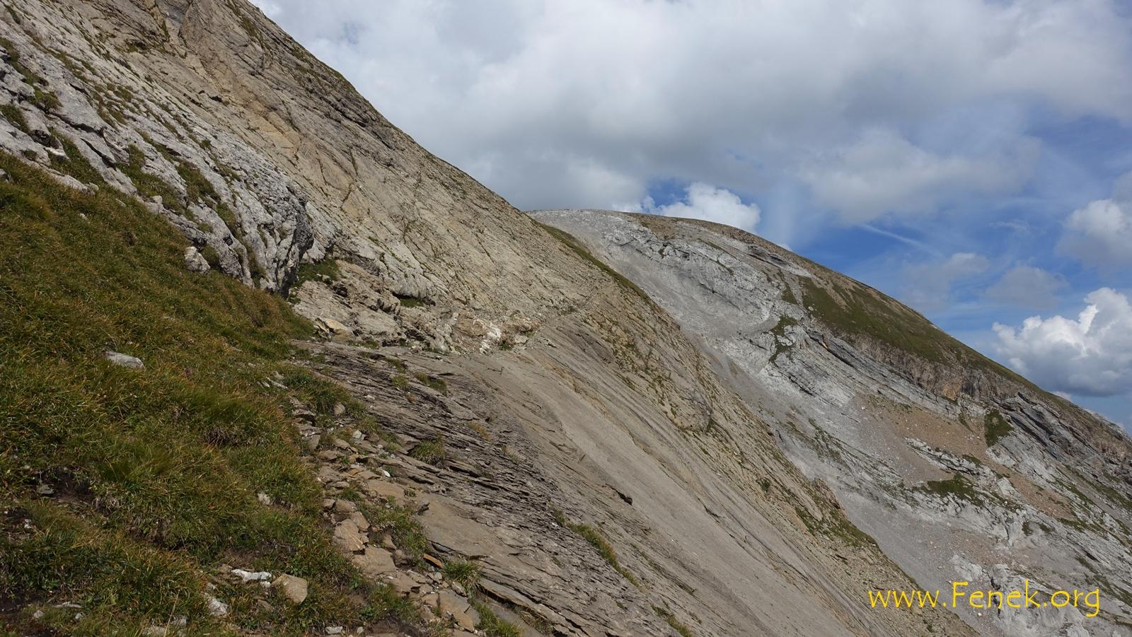 schmale Rampe fürh hinauf auf den Grat Richtung Niesehorn