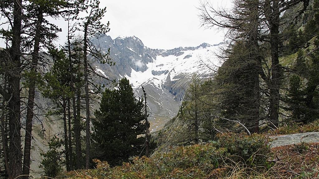 Jolital - der Weg zum Wilerhorn