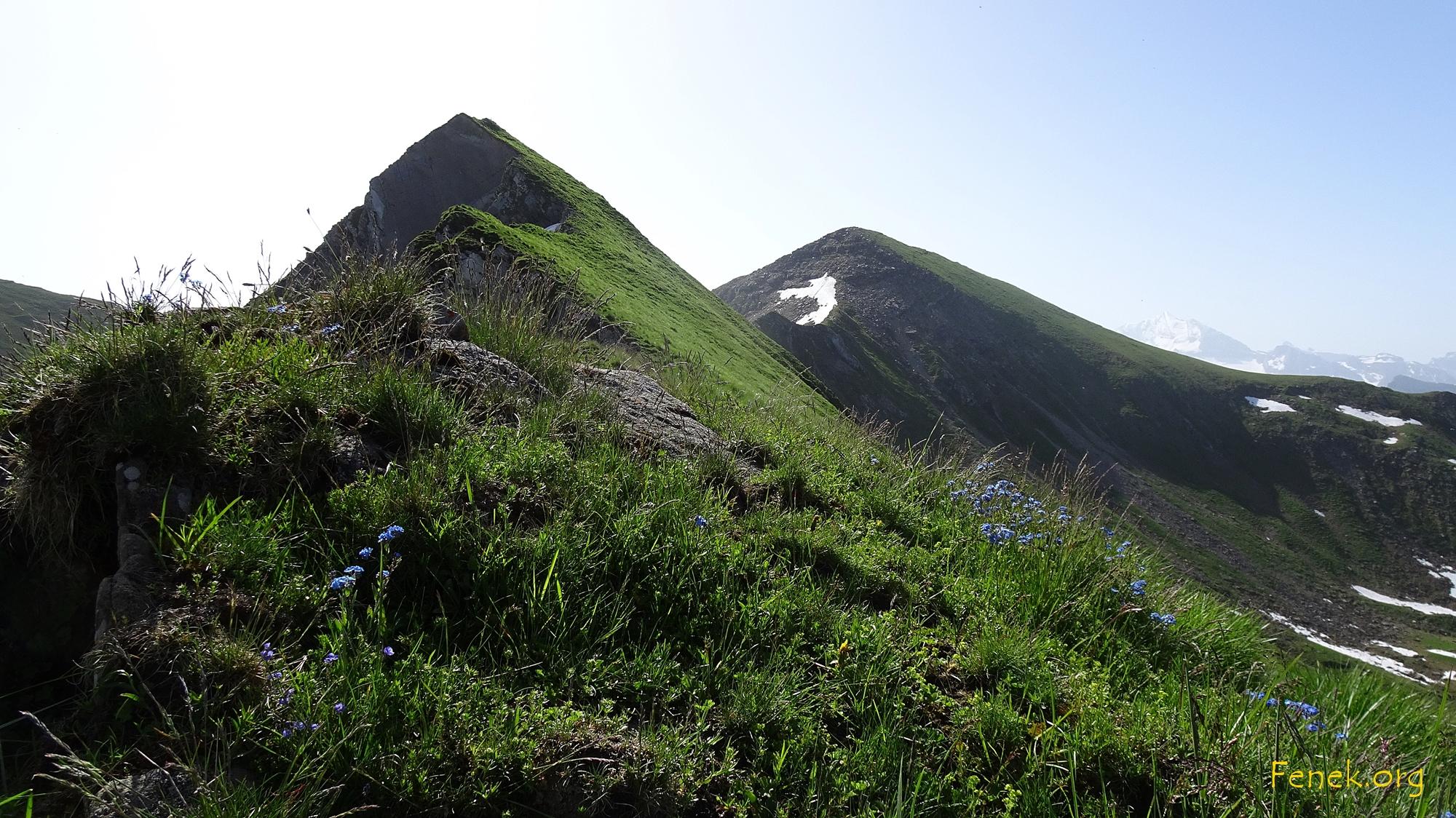 links der Gipfel - rechts Mäggisserehore