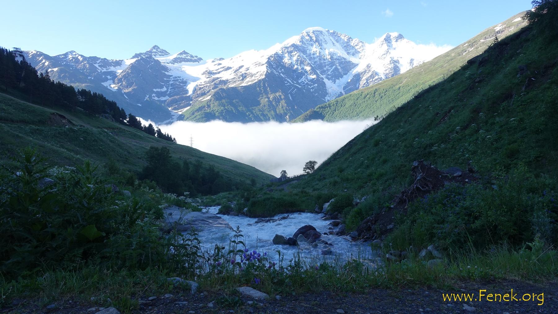 am Morgen - dem Nebel entflohen