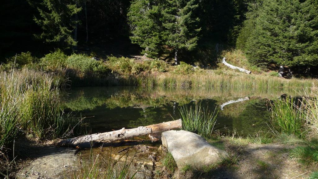 oberhalb Mornera - ein natürlicher Tümpel