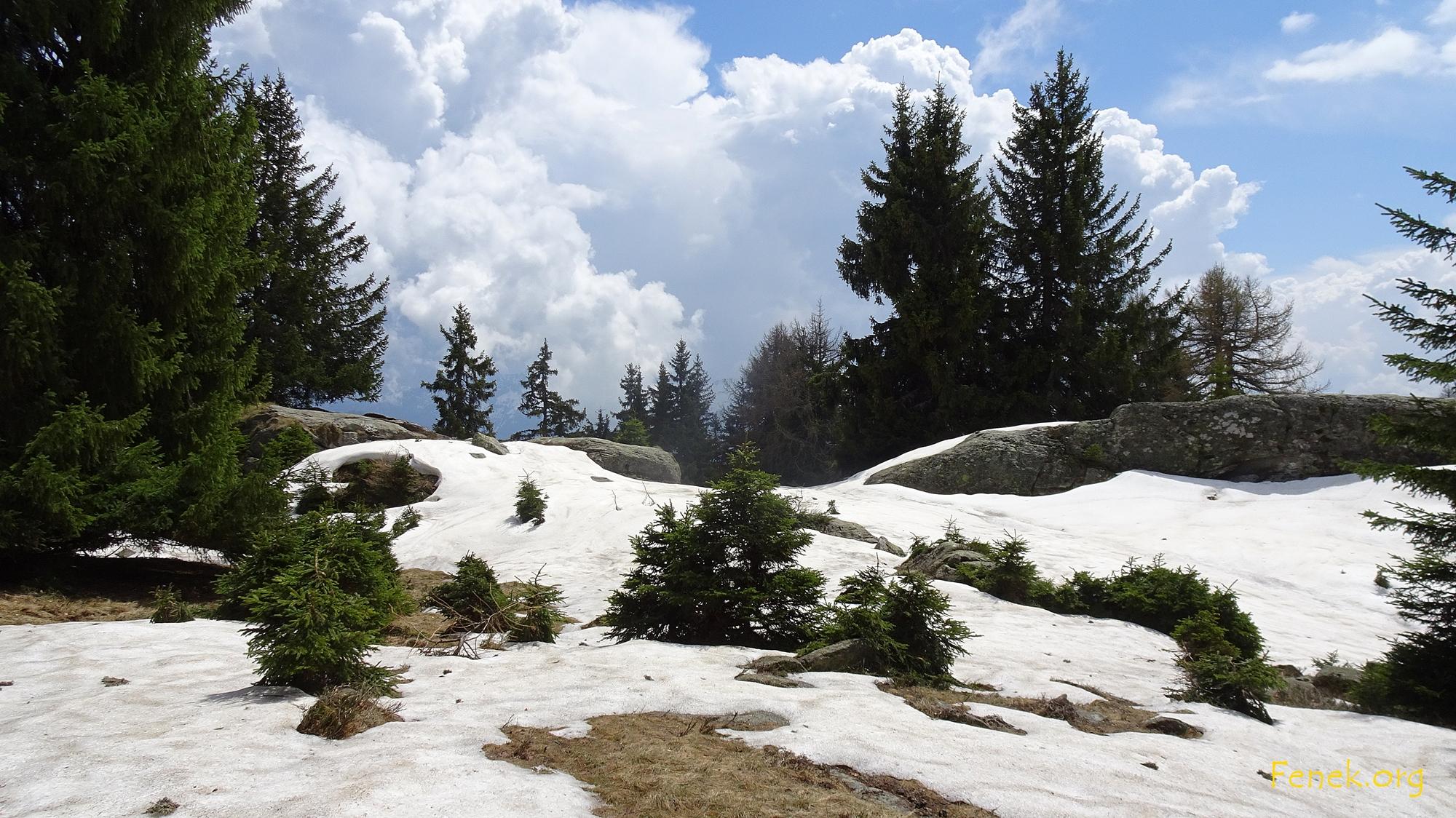 weiter geht's durch Schnee - hier der Gipfel Colmine 1'742m