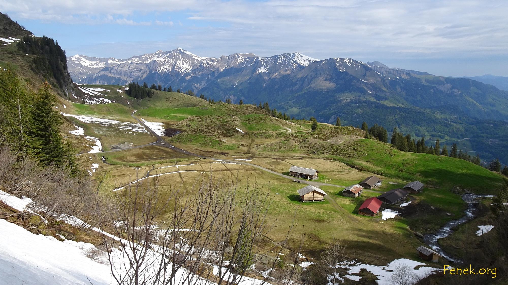 im mittlisten Wandel - eine Alp umgeben von Moorlandschaft