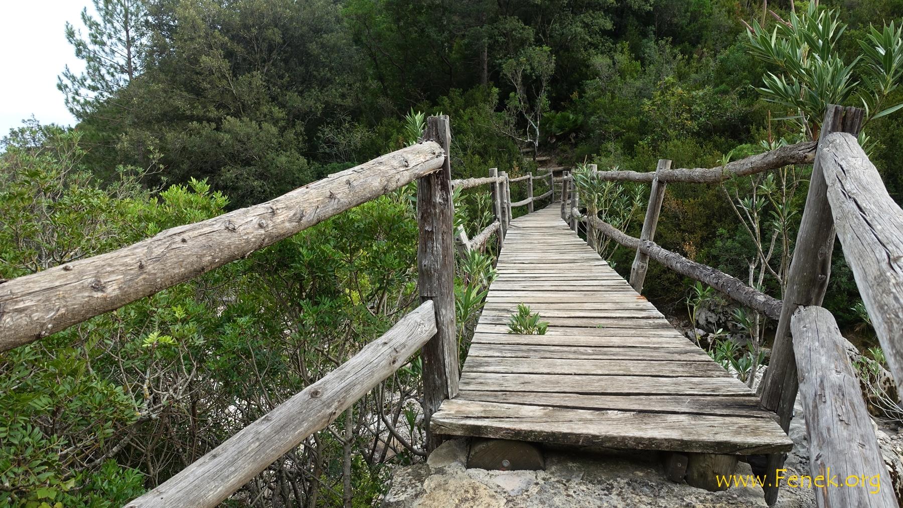 am Beginn eine Brücke in den Dschungel.....