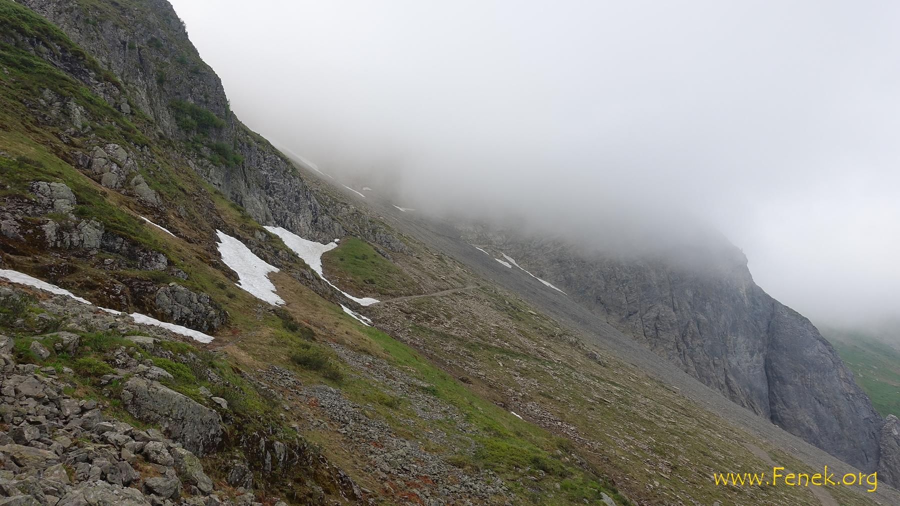 ich tauche ein in den Nebel zum Col du Jorat