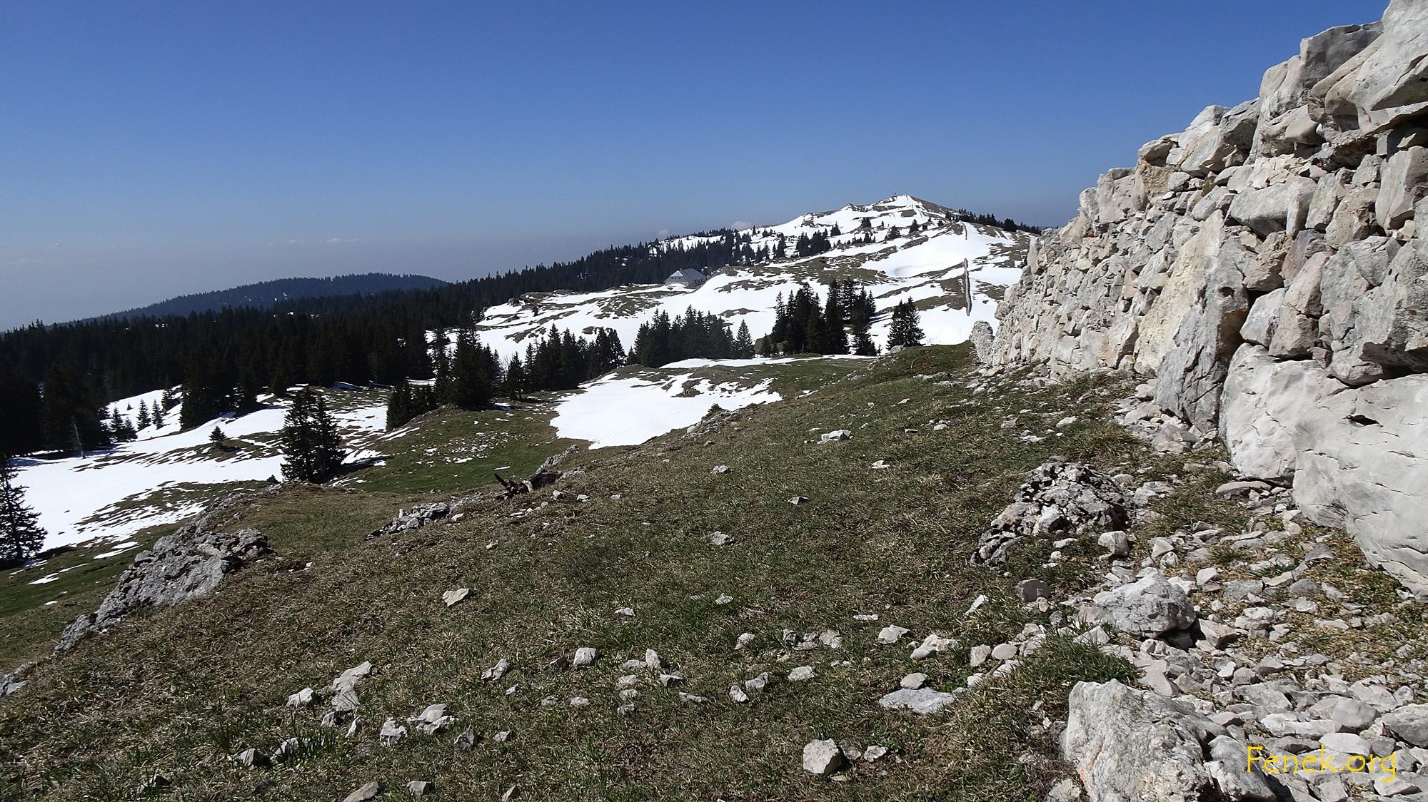 Gipfel Mont Tendre in Sichtweite