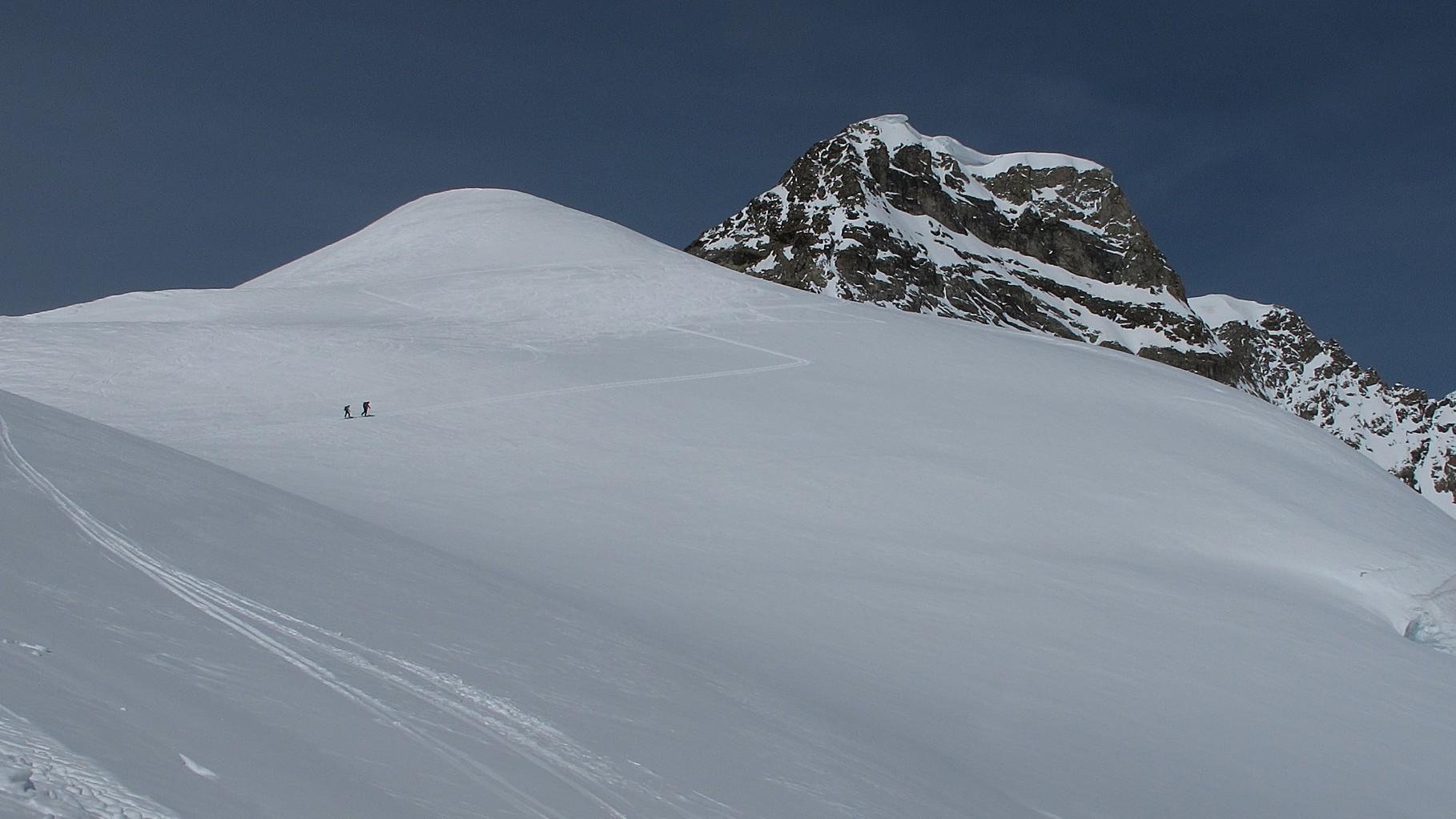 der Schneegipfel Louwihorn vor uns