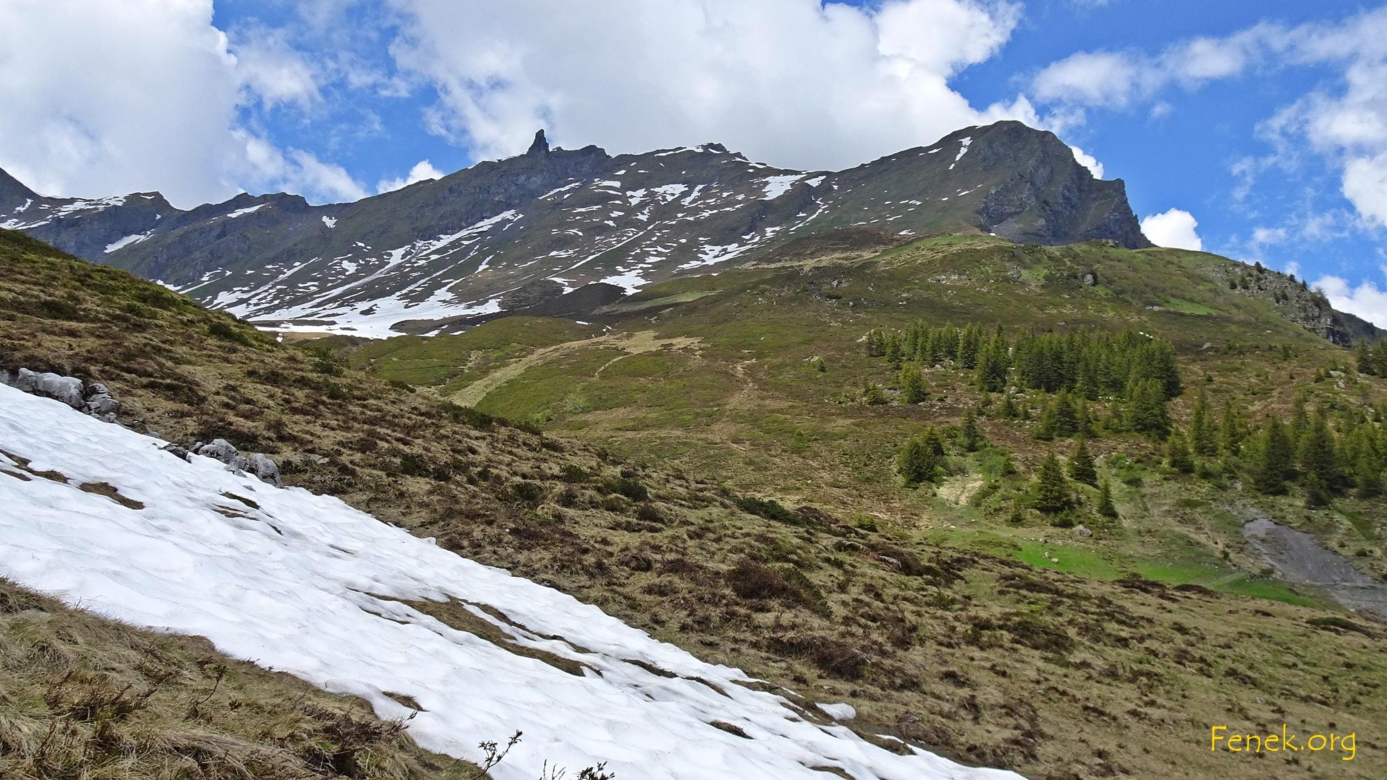 wieder unten auf der Alp