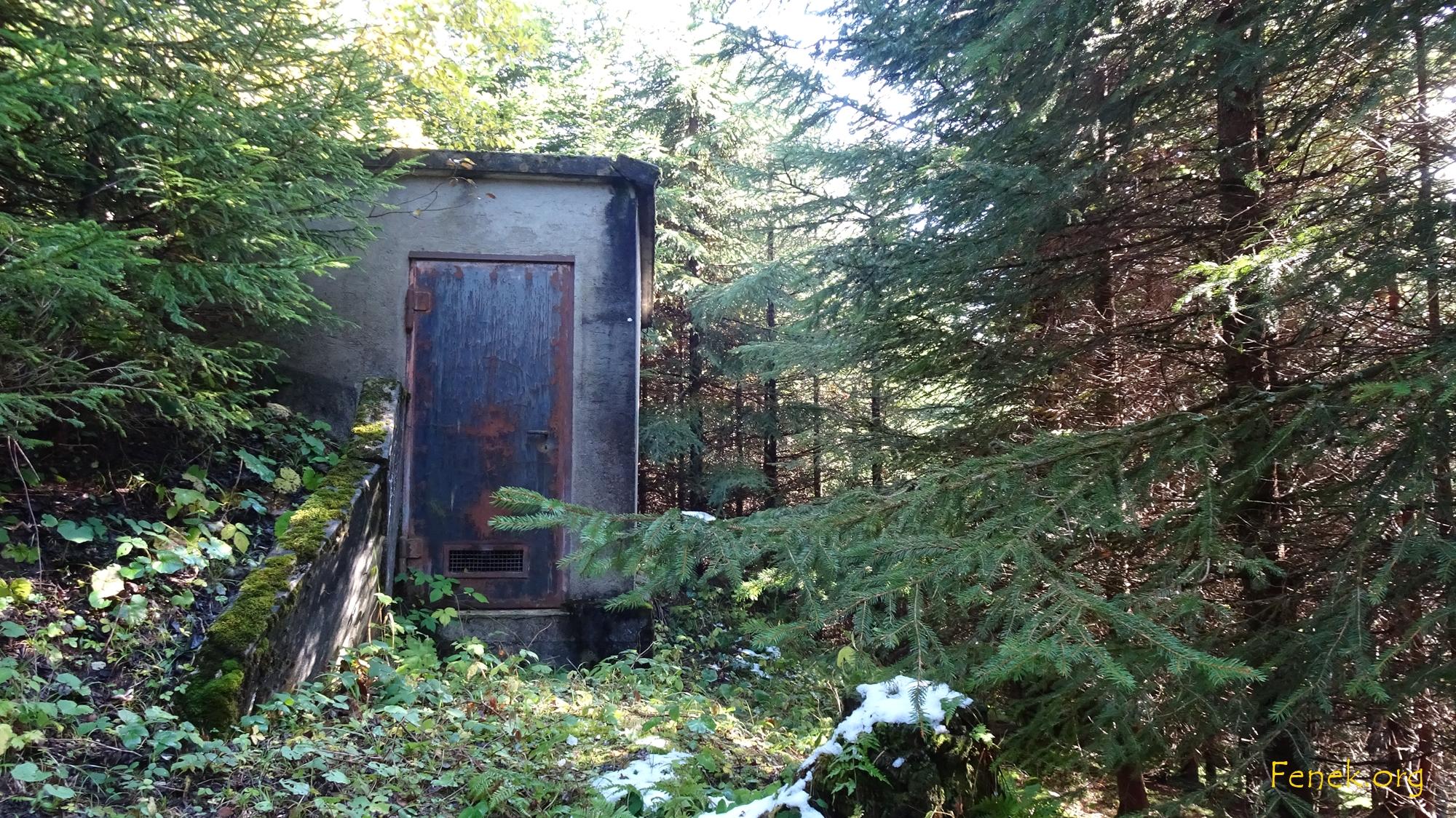 Wasserfassung im Wald