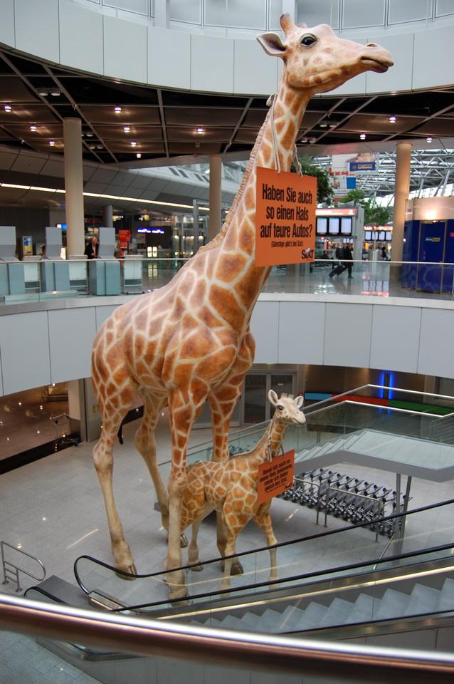 Sixt, Flughafen Düsseldorf, 11 m hoch