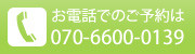 07066000139