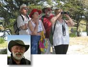 observation des oiseaux - cote picarde