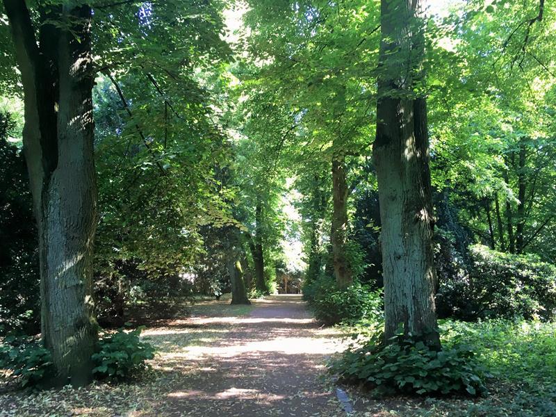 direkt am Lindenpark gelegen - Raum für Natur