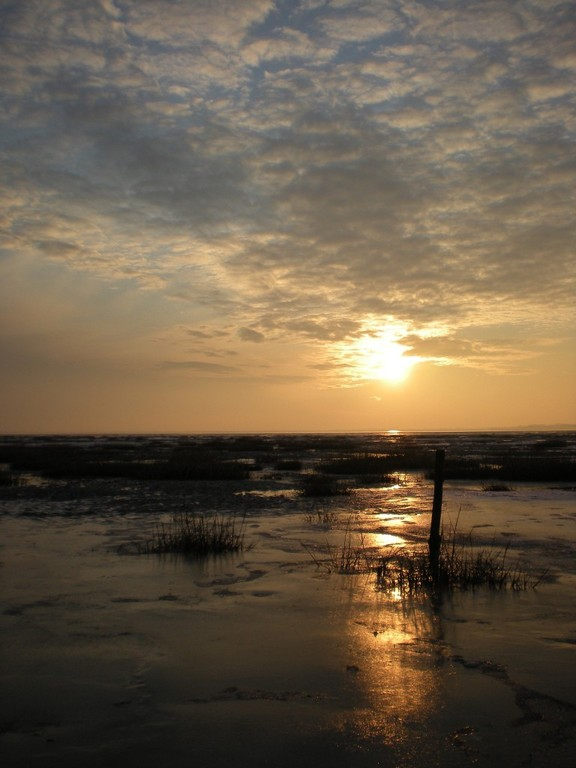 Soleil couchant sur la côte Picarde