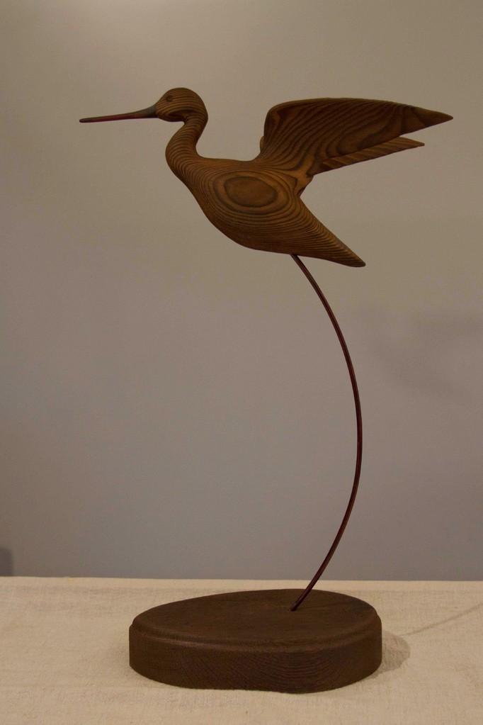 oiseau de bois: chevalier aboyeur en vol 2