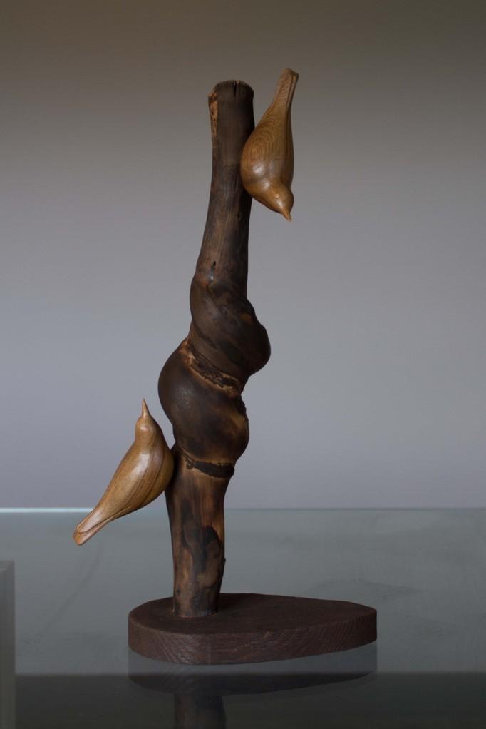 oiseau de bois: 2 sitelles noyer