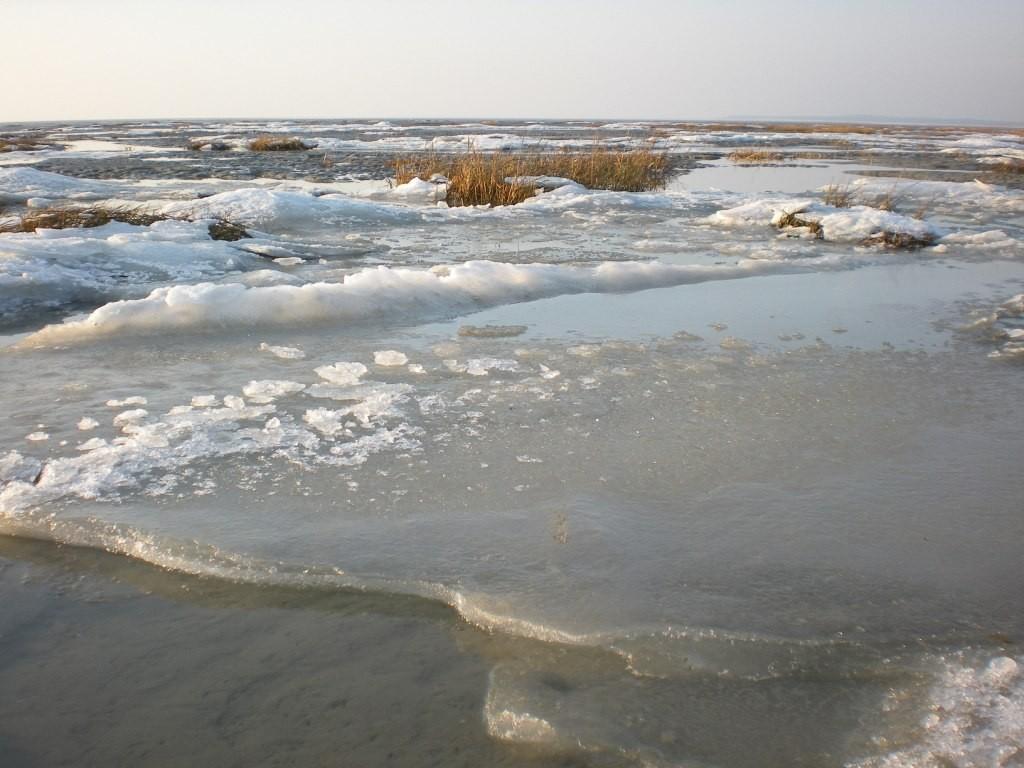 La mer gele en baie de Somme