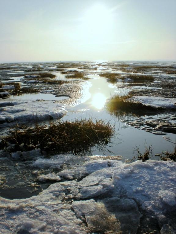 rayon de soleil sur la glace en baie de Somme