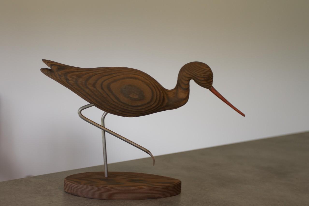 oiseau de bois: chevalier patte en l'air