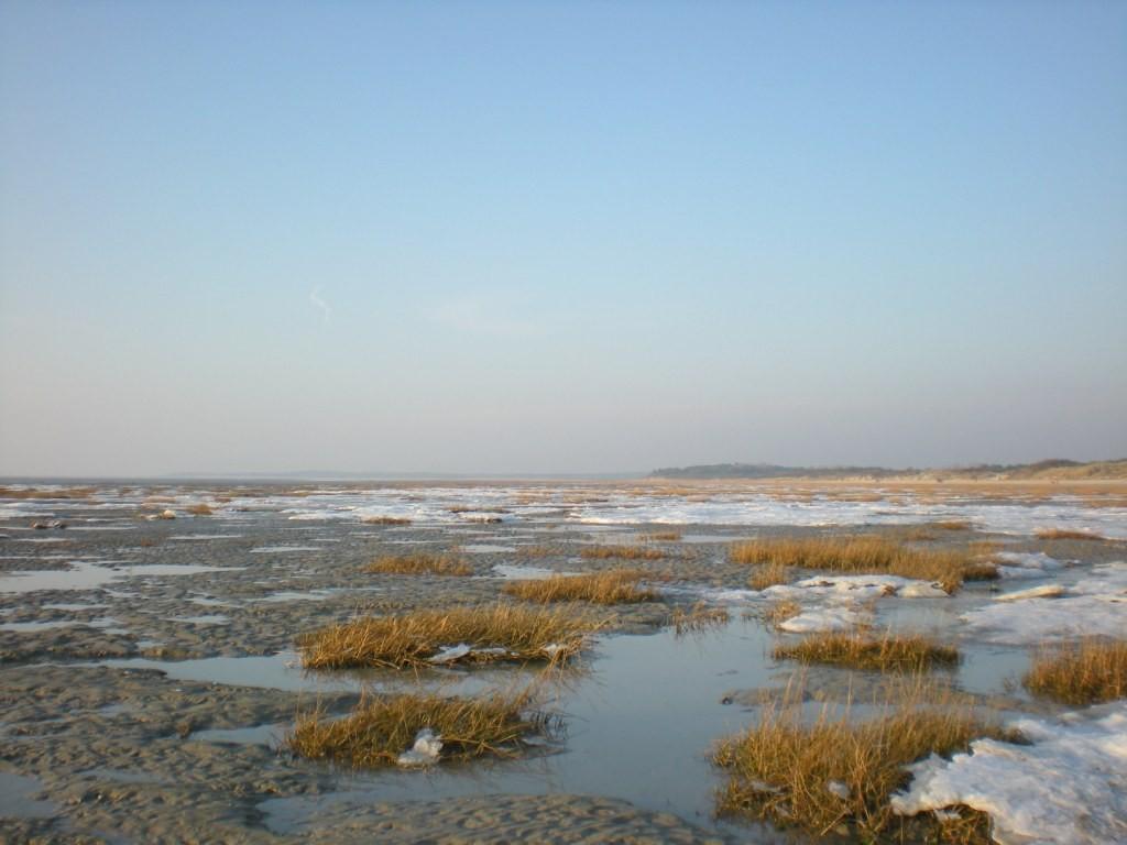 immensité de la baie prise par la glace.
