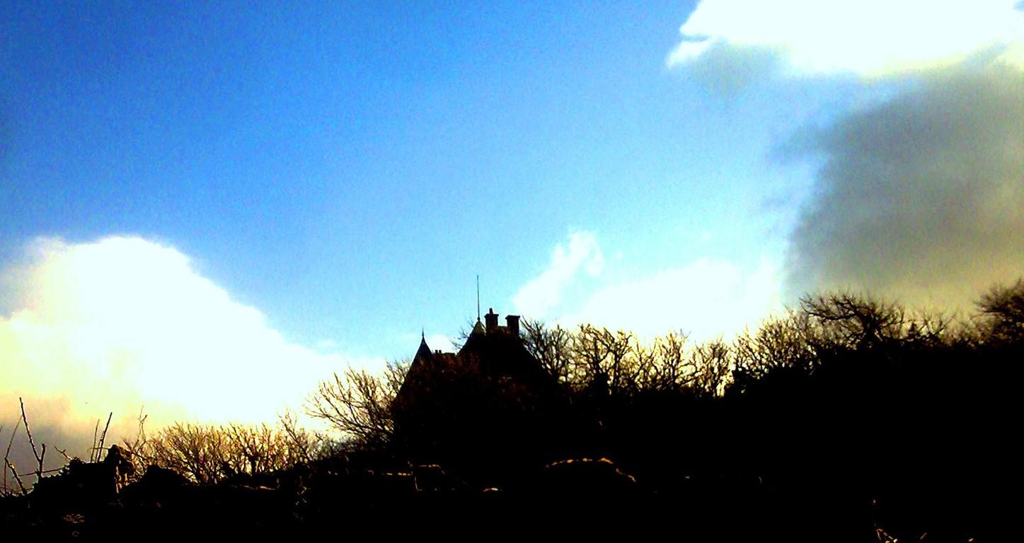 Ambiance hivernale; petit matin frileux en baie de Somme, maison hantée?