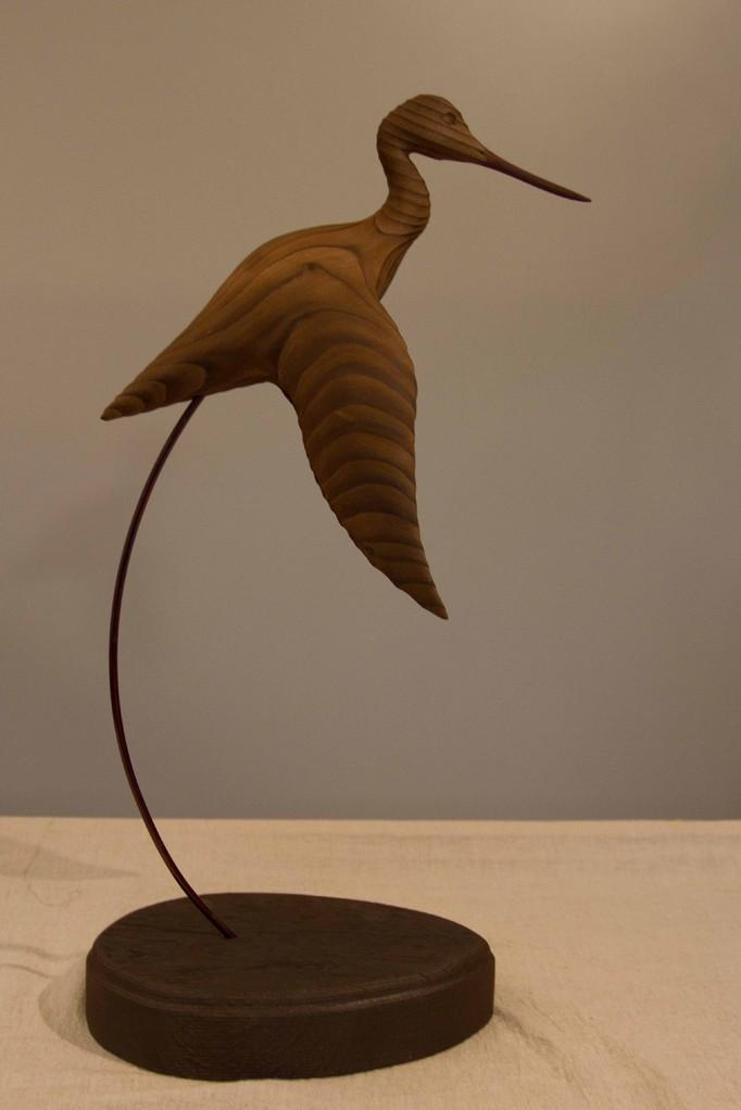 oiseau de bois: chevalier aboyeur en vol