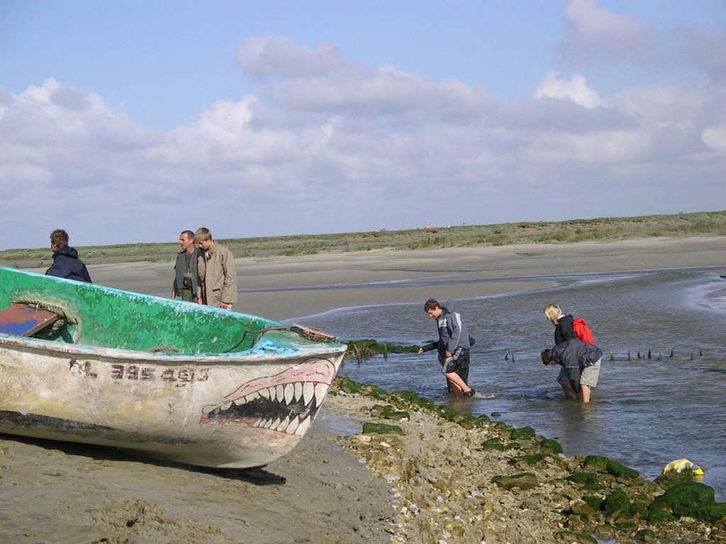 Les dents de la Mer en Baie de Somme