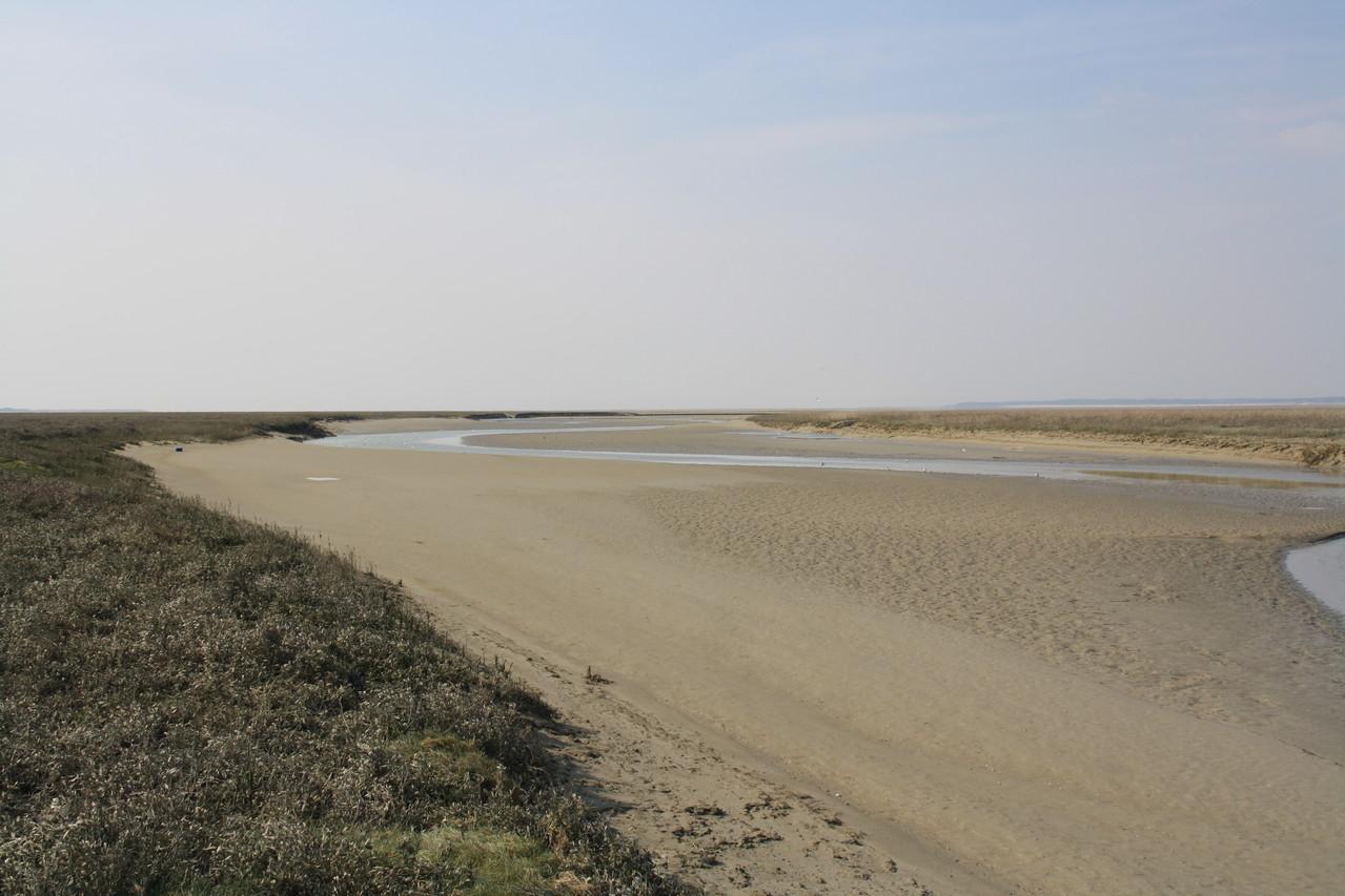 près salé Baie de Somme
