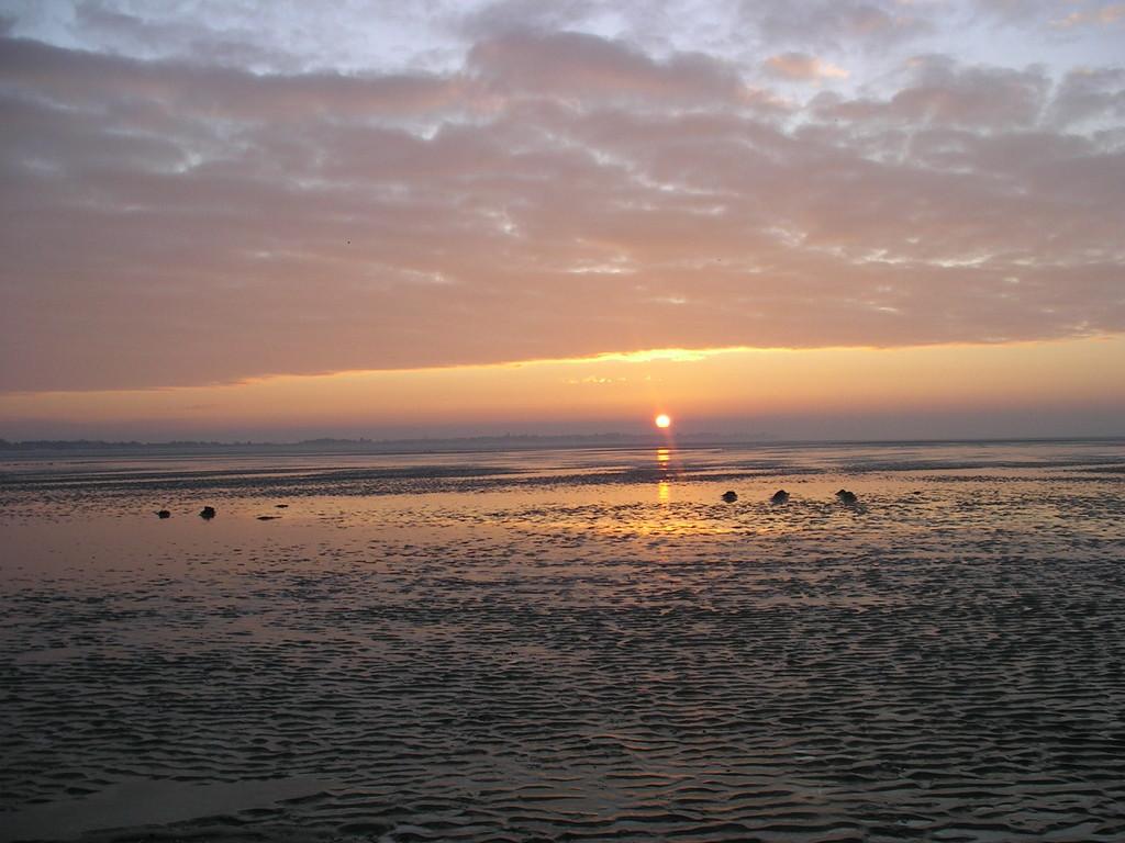 Couché de soleil sur la Baie de Somme