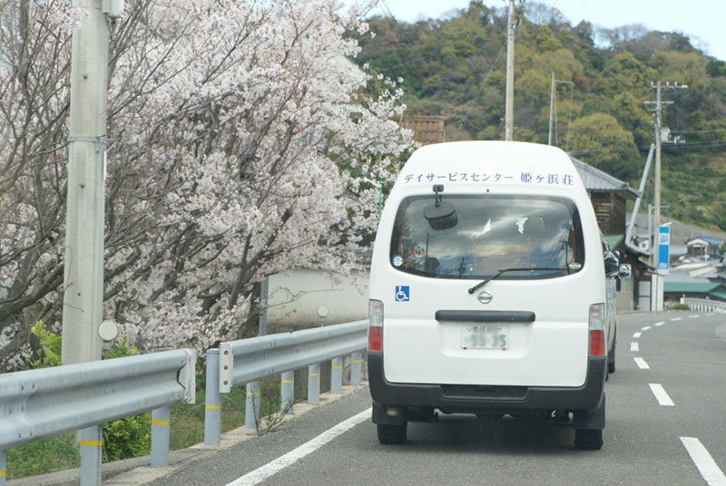 花見・遠足・ドライブ