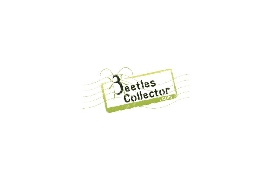 Création logo - Beetles Collector - Collectionneur et vente de coléoptères - Poitiers (86)