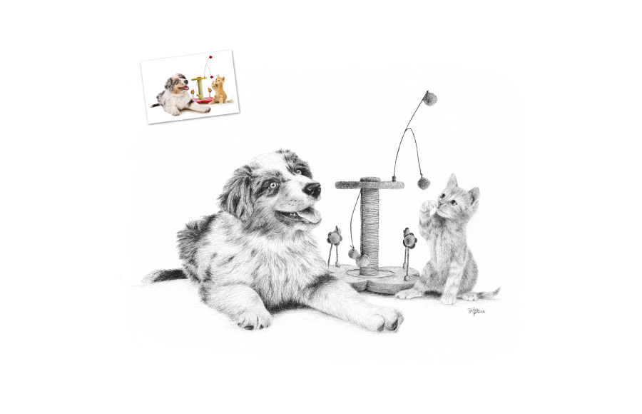 Portraits animaliers - 2012 - Chiot et chaton - Format A3 (42 x 29,7 cm)
