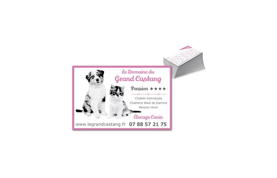 Création carte de visite - Le Domaine du Grand Castang - Pension canine et féline - Montreuil-Bonnin (86)